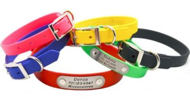the collars provide protection from fleas
