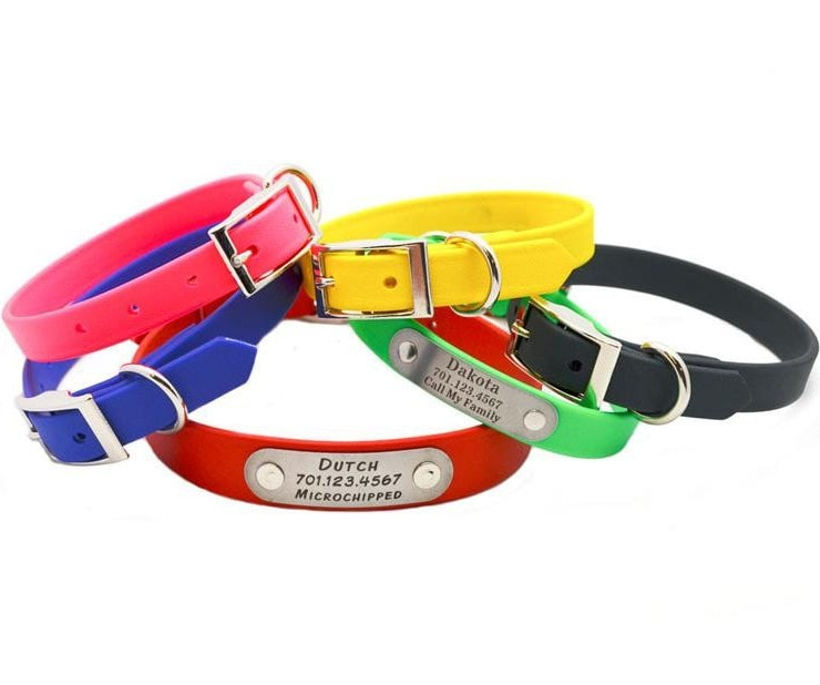 6 Most Effective Flea Collars For Dogs
