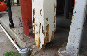 signs of drywood termites